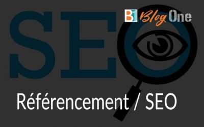 Referencement Seo Pau